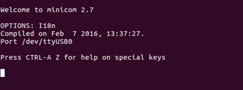 Serial terminal emulator ready