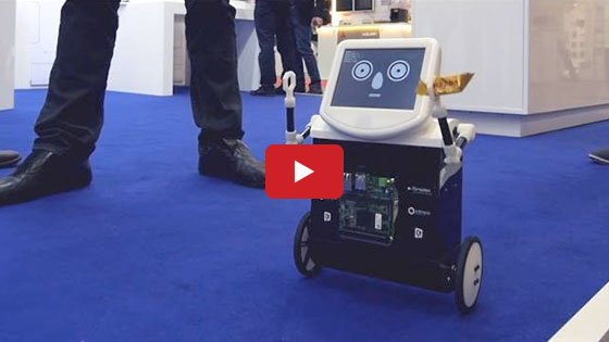 TAQ - The Balancing Robot