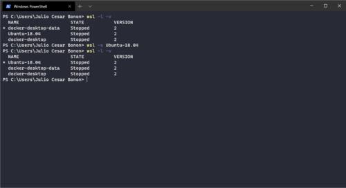 wsl -s Ubuntu-18.04 output