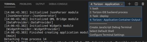 VS Code Terminals