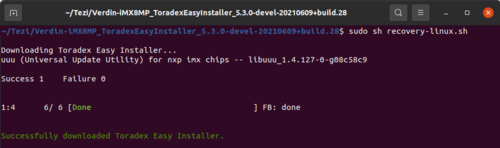 Example of output after successful execution of the recovery script